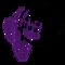 Purplecactus