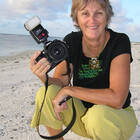 Karen Willshaw