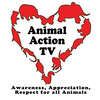 AnimalActionTV