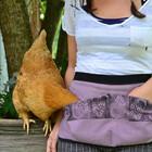 mychickens