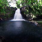 Liduduhniap Upper Falls Panorama - Pohnpei, Micronesia by Alex Zuccarelli