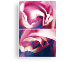 Spring - Roses - Blue Moon Canvas Print