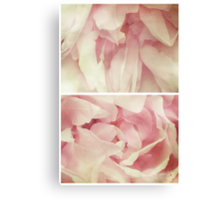 Spring - Roses - Palest of Pinks Canvas Print