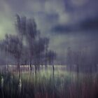 Cold and Bleak by Su Walker