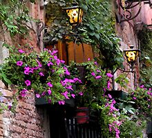 Watercolor - Purple Petunia's in Venice by Tamara  Kaylor