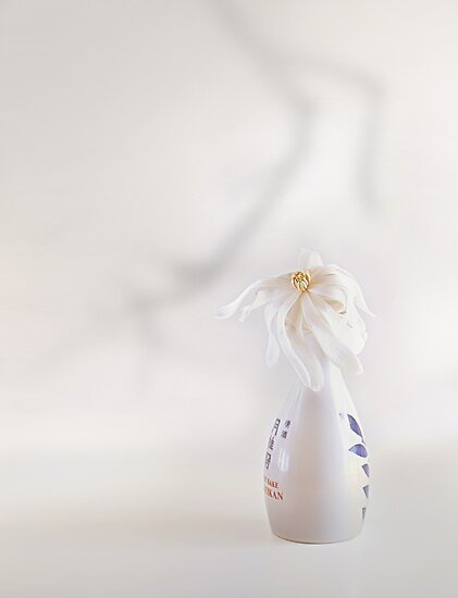 Nice In White Satin (2) by John Poon