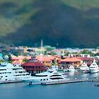 St. Thomas US Virgin Islands by Shelley Neff