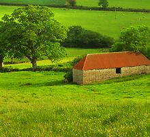 The Red Barn by phil hemsley