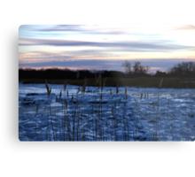 Buckhorn Pond Before Dawn Metal Print