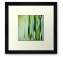 Vertical Grasses Framed Print