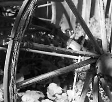 Carriage Wheel with Wire by LisaBoone