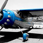 Baby Blue Cessna by Bill Gamblin