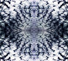 Texture by Jason Samfield