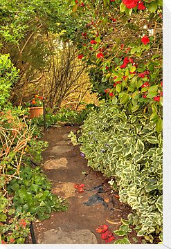 Garden Walkway by Elaine Teague