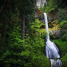 Pup Creek Falls by Tula Top