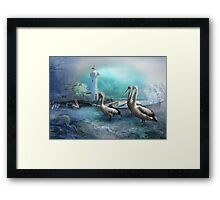 Peaceful At Pelican Point Framed Print