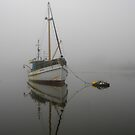 Fishing in the fog by Michael Humphrys
