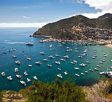 Catalina Island Shoreline by Eddie Yerkish