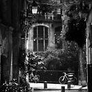 Barcelona by Max Alessandrini