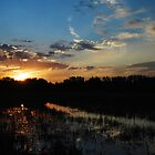 Wetlands Sunset by Roxanne Persson