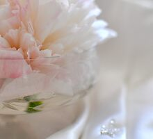 Peony on satin by Heather Thorsen