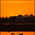 Sunrise over Mandurah Estuary by Peter Rattigan