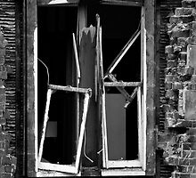 Window on Christchurch 2 by NolsNZ