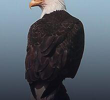 Gradient Eagle by Gail Bridger