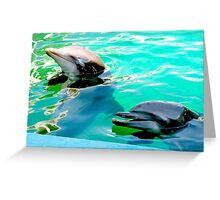 Dolphins at the aquarium Greeting Card
