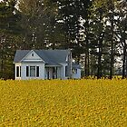 A Country Home by Sheryl Gerhard