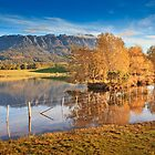 Mt Roland, Sheffield, Tasmania, Australia by Matthew Stewart