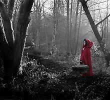 Little Red Riding Hood by Samantha Higgs