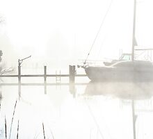 Foggy Whiteout by Eileen McVey