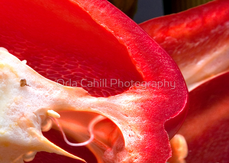 Pepper Abstract 4 by Orla Cahill Photography