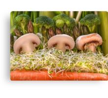 Fun Vegetable Landscape no.4 Canvas Print