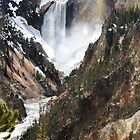 The Heart of Yellowstone by Kay Kempton Raade