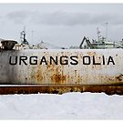 Waste Oil, Akranes Harbour (Iceland) by Madeleine Marx-Bentley