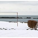 Back Yard, Akranes (Iceland) by Madeleine Marx-Bentley