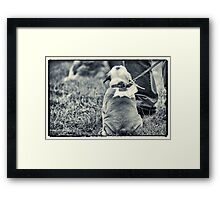 Sitting still Framed Print