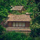 Hidden Dojo by sillicus
