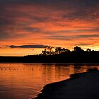 Macquarie Harbour sunset by Roger Neal
