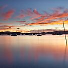 Reflections of Dawn by Alistair Wilson