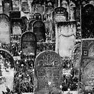 Ancient names fragments - Jewish cemetery in Czeladz by Jacek Lidwin