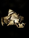 Dried  Flowers  Series -Jasmin- by Evita