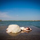 Washed up by Megan Vaughan