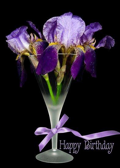Iris Birthday by Maria Dryfhout