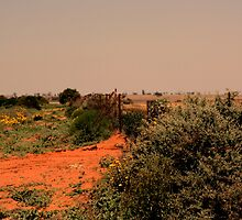 outback fence by fazza