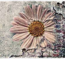 Another Decayed Flower! by Julesrules