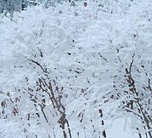 Snowy Weight by triplelll