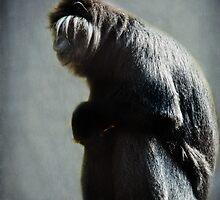 Monkey blues by Lissywitch